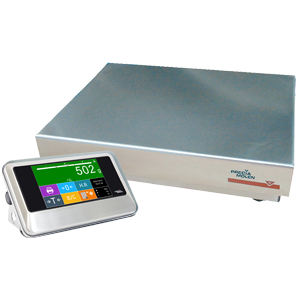 ready to weigh C25R1-GM scale